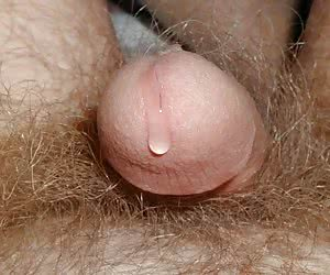 A small penis is always useless set