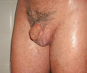 Small penis sissy pictures